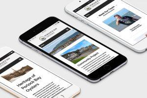 Porlock Bay Oysters website on phone